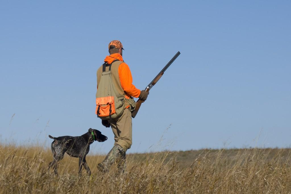Summertime Preparations for the Deer Hunting Season